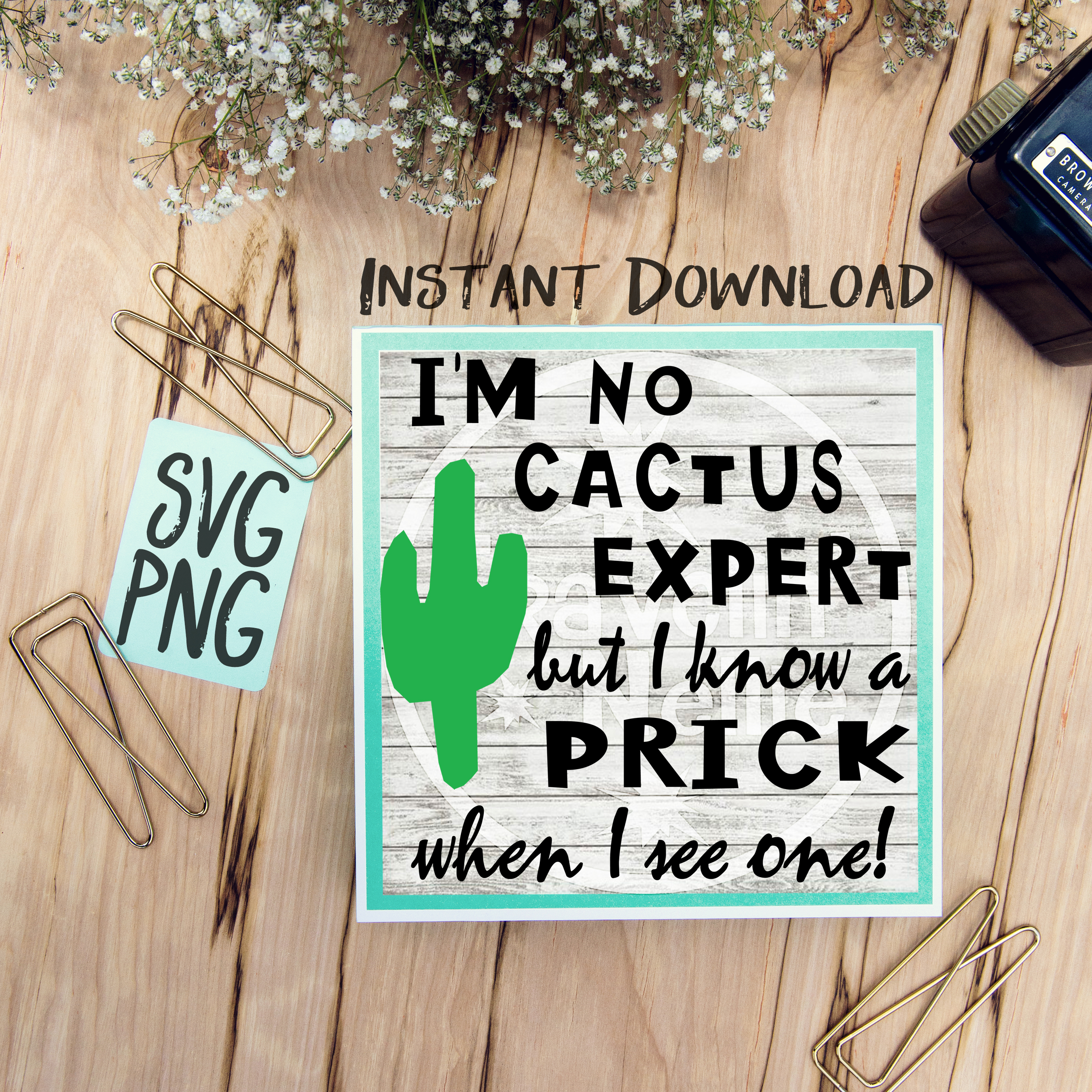 I know a Prick When I see One SVG PNG Image Design for Vinyl Cutters Print DIY Shirt Design Cruise Vacation Anchor Brother Cricut Cameo Cutout example image 1
