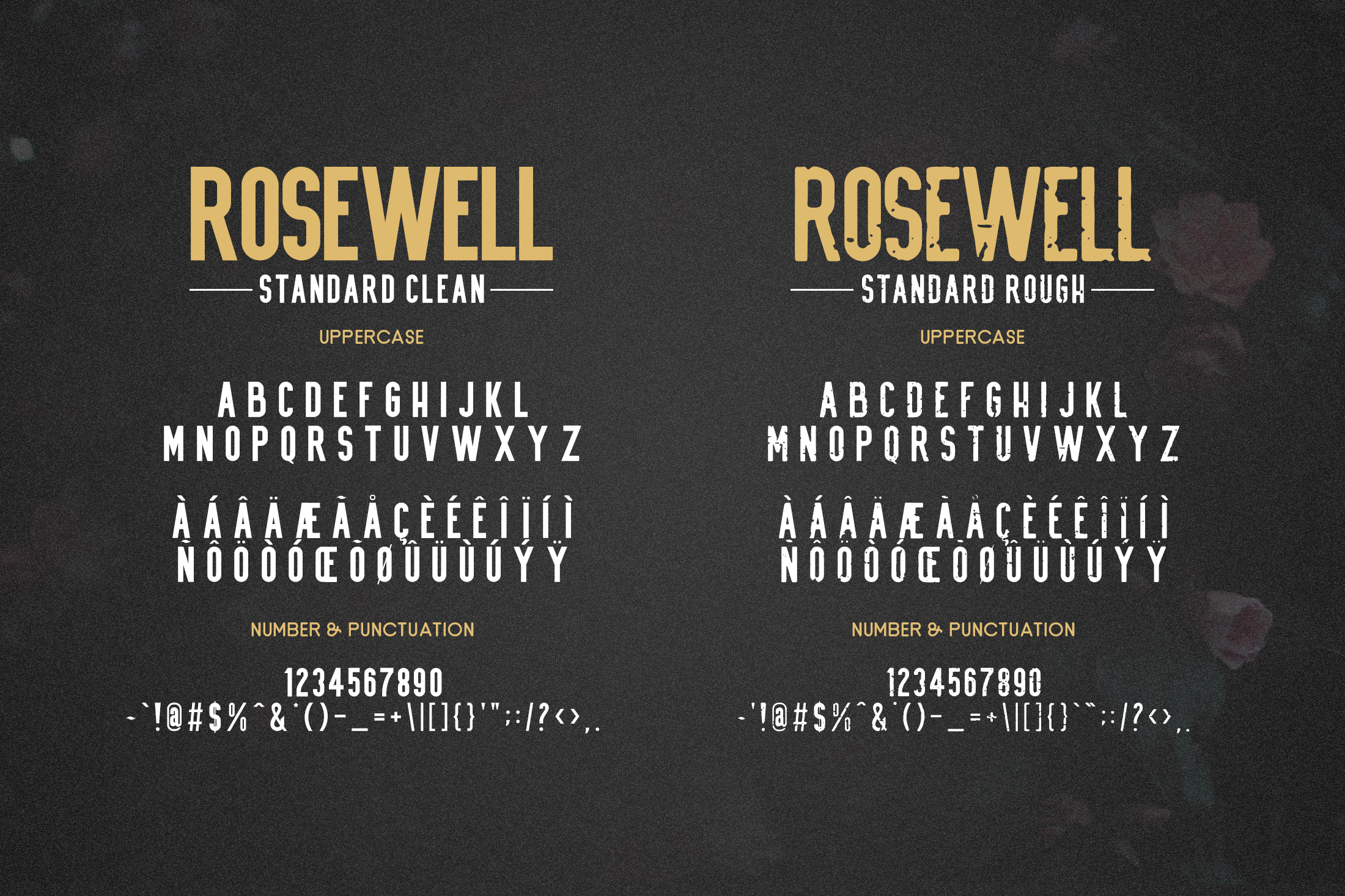 Rosewell Font Collection example image 9