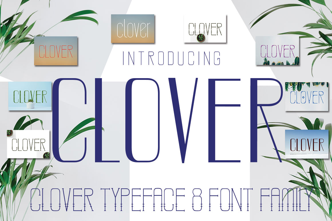 CLOVER FAMILY example image 4