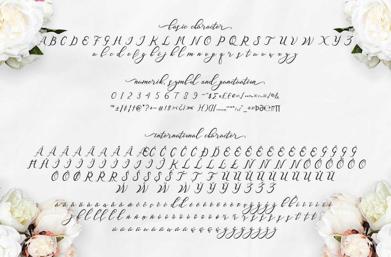 Nazeefa Script Font ( February Sale ) example image 5