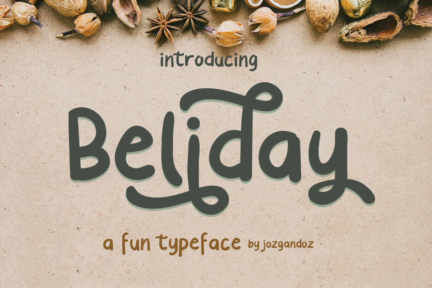 Beliday Font example image 1
