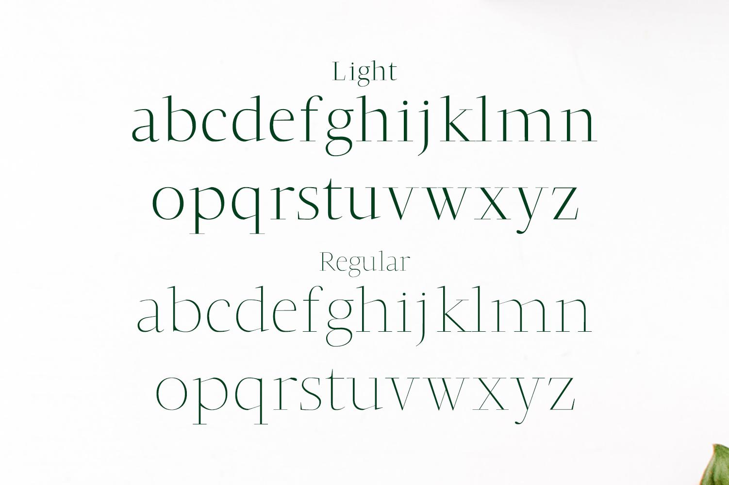 Jesusa Serif Typeface example image 3