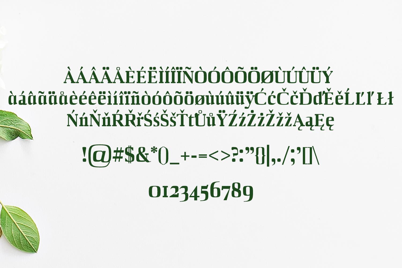 Barnes Serif Typeface example image 3