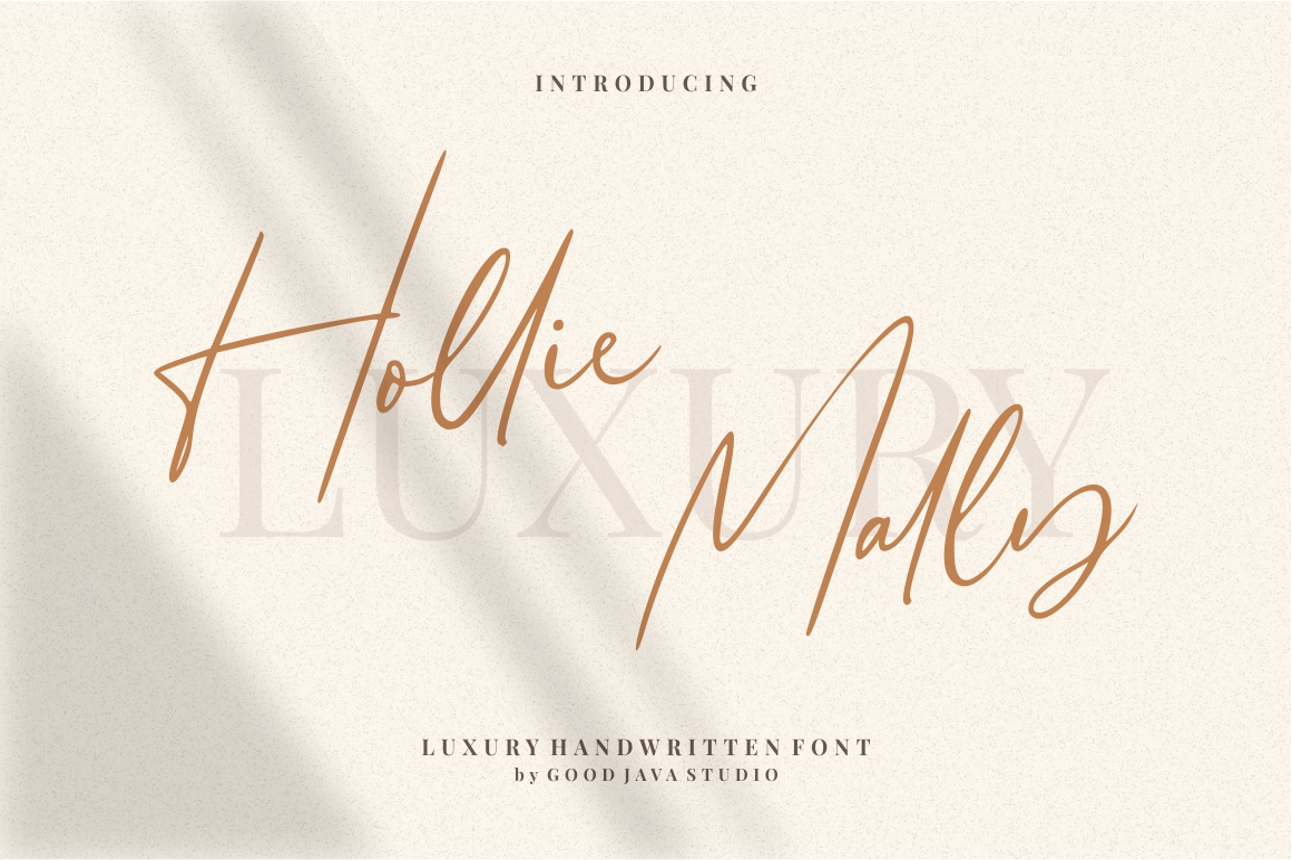 Hollie Mally - Handwritten Font example image 1