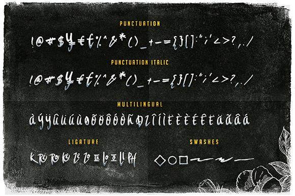 Aeros + Extra Font Roast example image 2