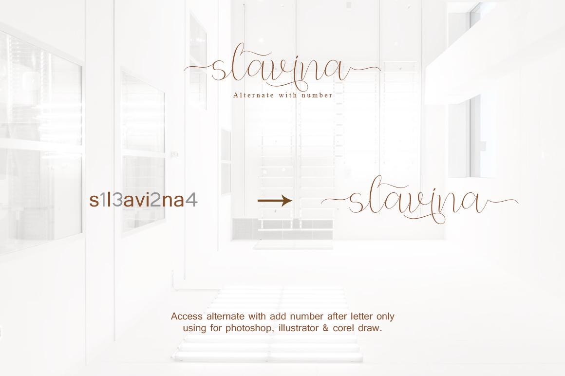 Slavina Script example image 8
