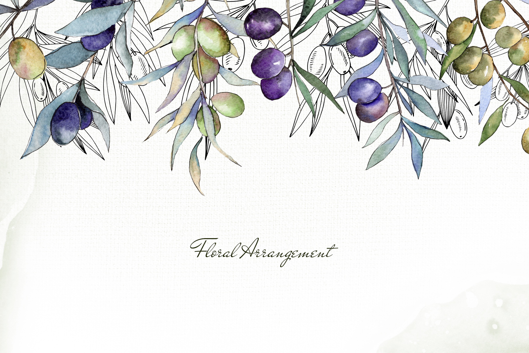 Olive branches collection Watercolor png example image 6