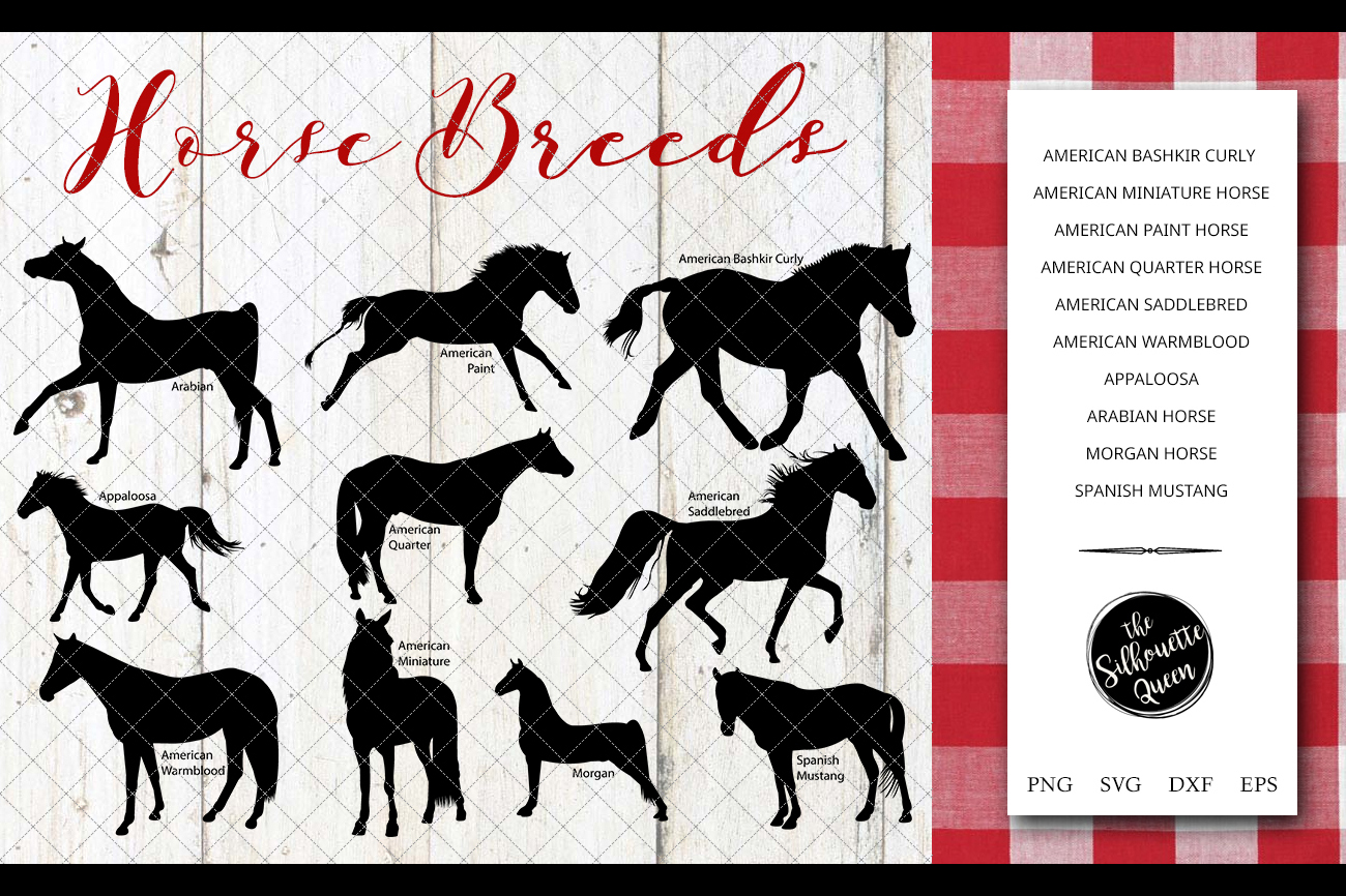 Horse Breeds Silhouette Vector svg file, horse svg cut file example image 1