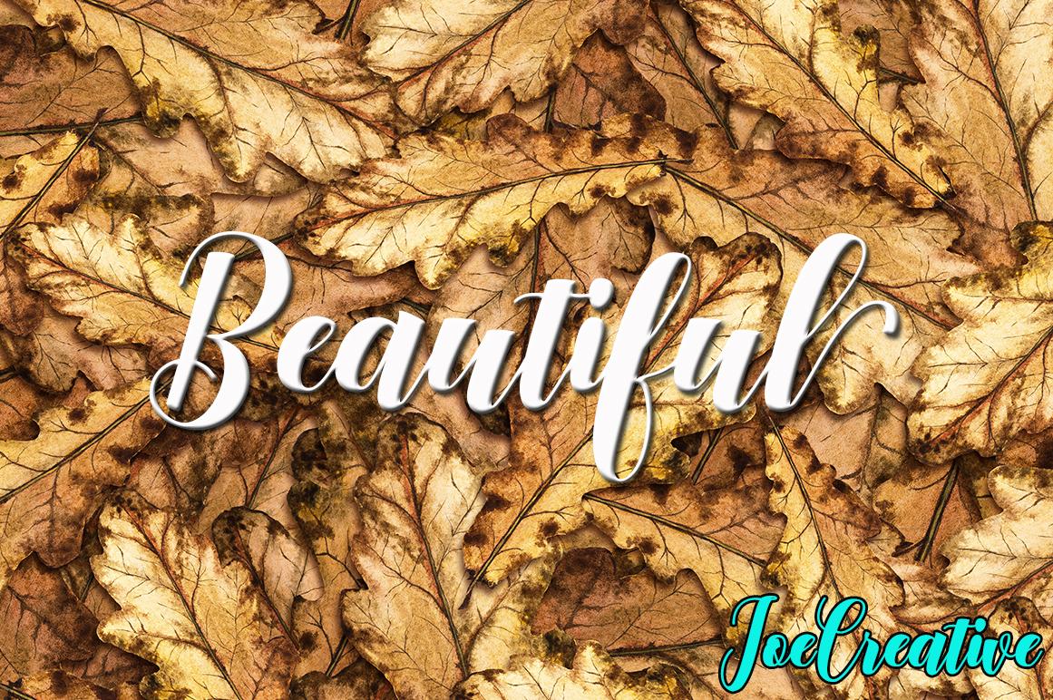 Calligraphy Font Bundles example image 22
