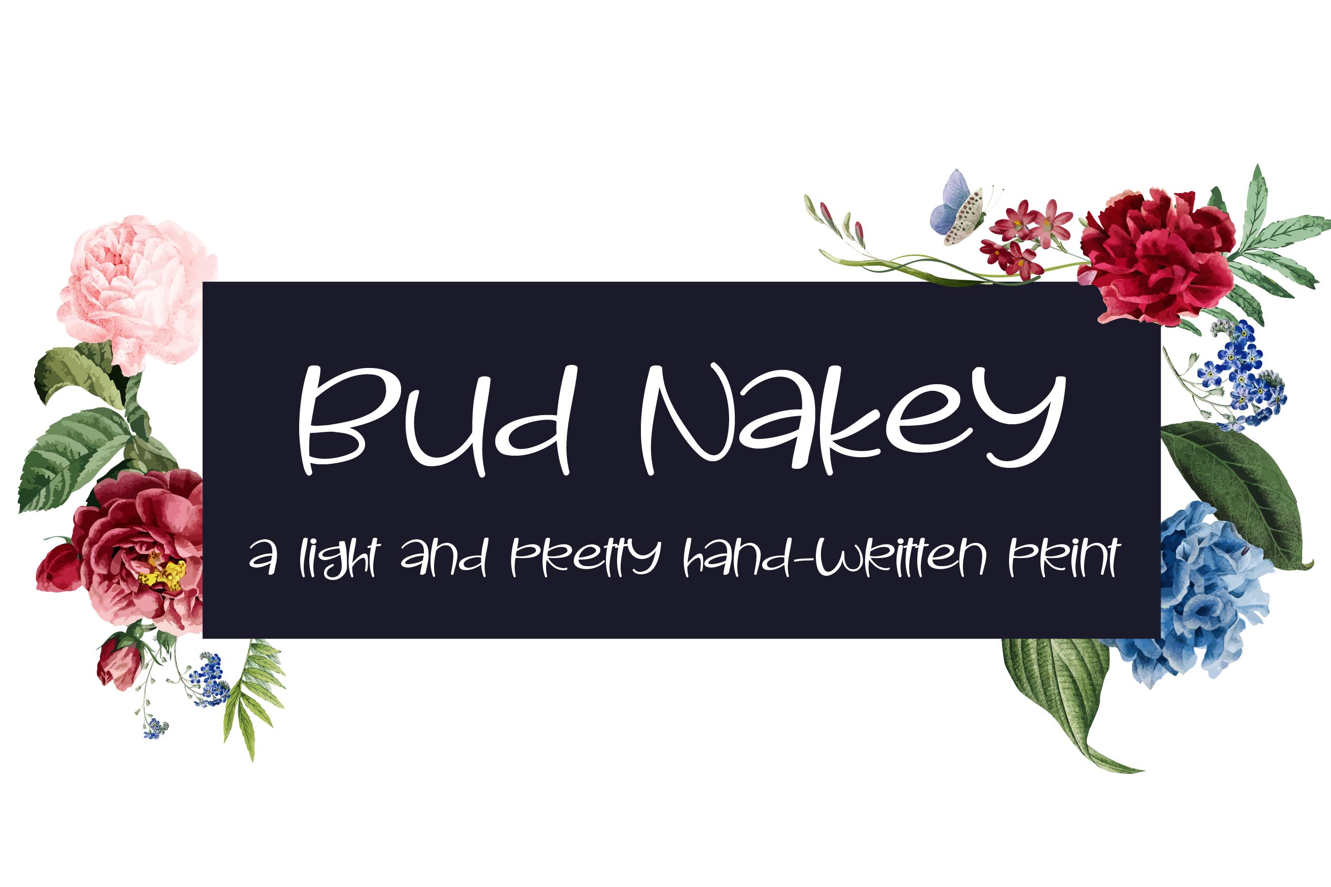 PN Bud Nakey example image 1