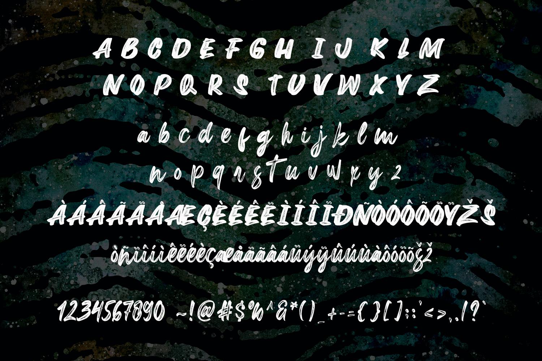 New Extreme Brush Font example image 10