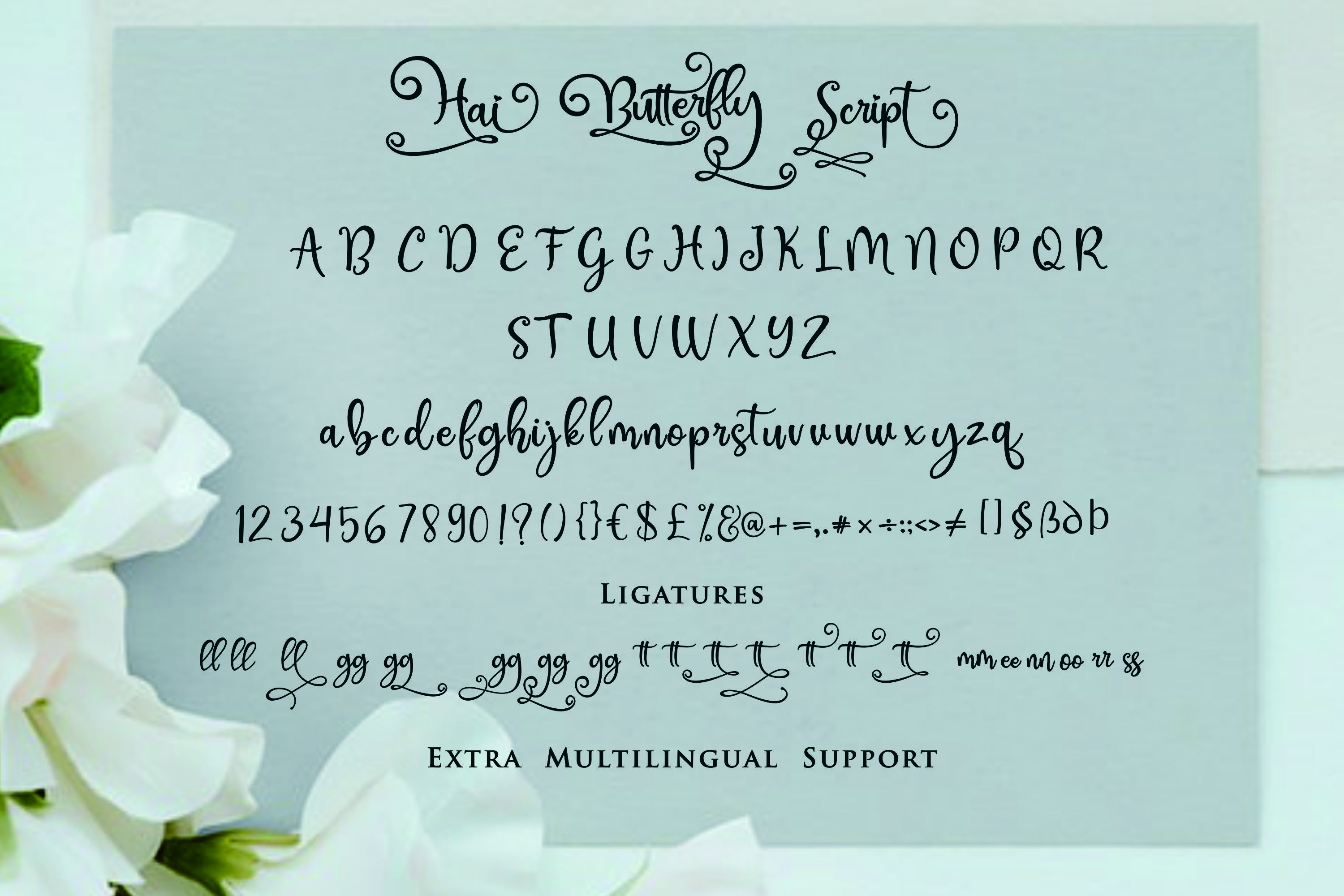 Hai Butterfly Font Duo and 500 Vectors example image 9