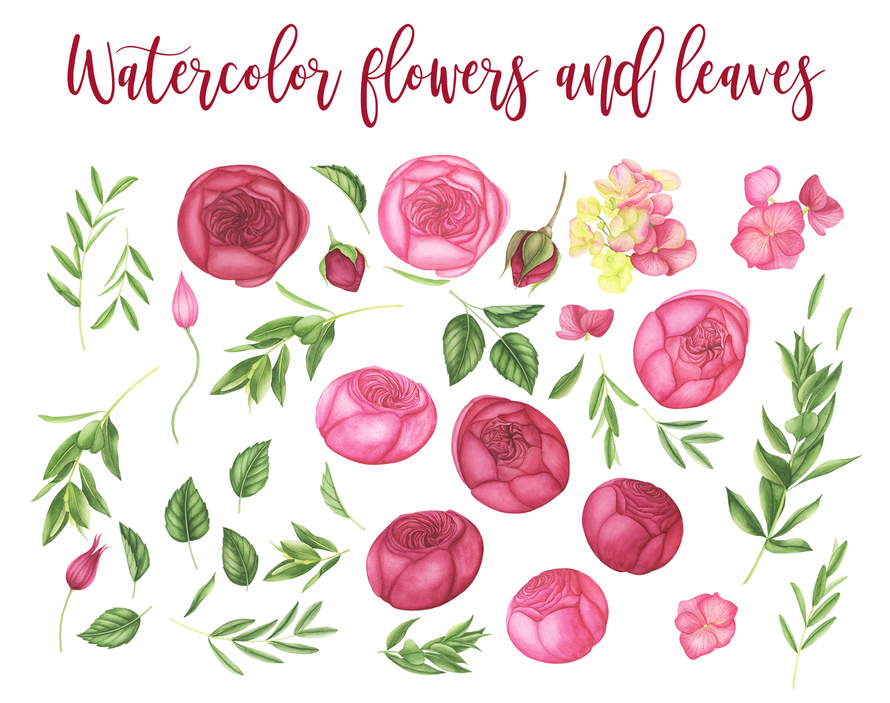 Watercolor Summer flowers clipart example image 3