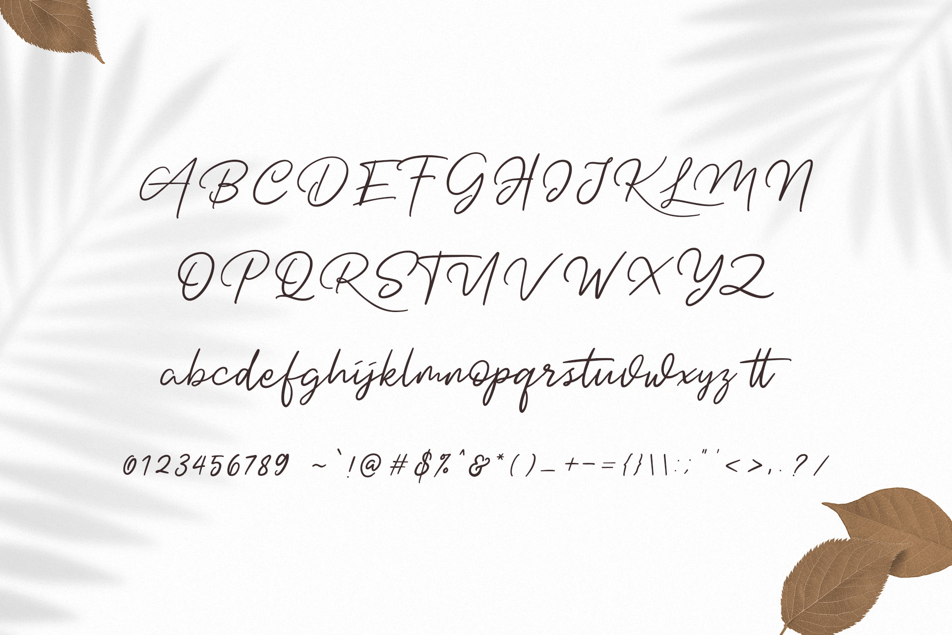 Dotyville Script Font example image 10