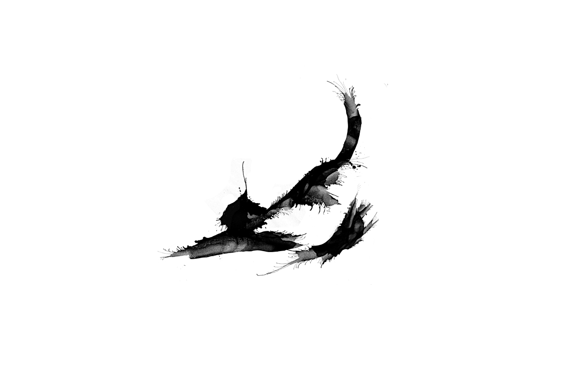 20 Illustration abstract Cats example image 16