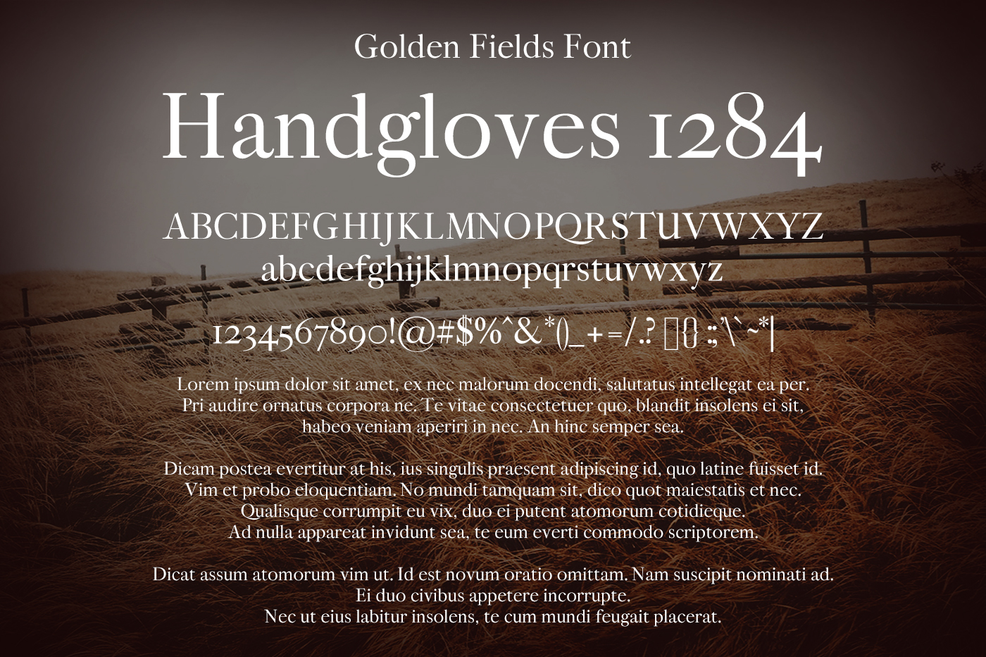 Golden Fields Font example image 2