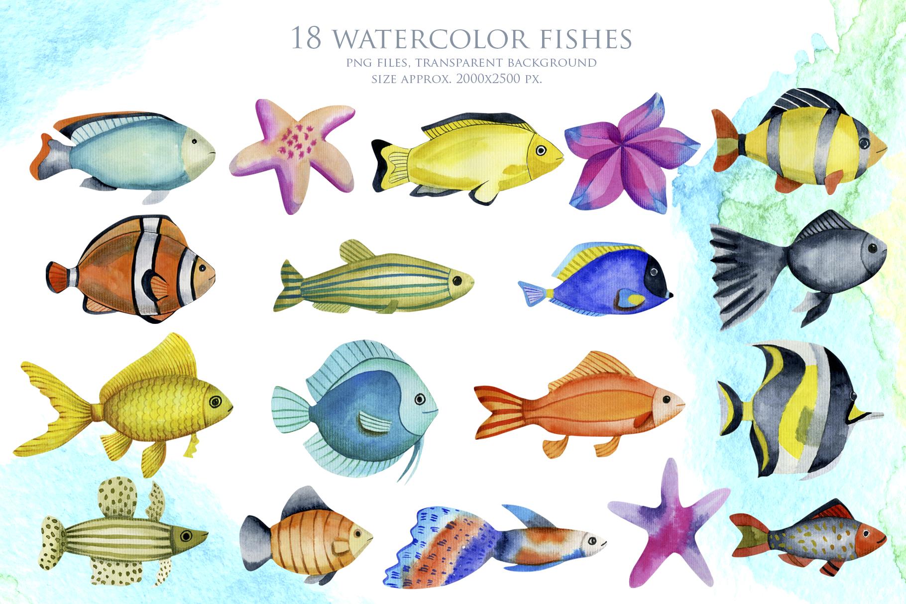 Sea life. Watercolor clip art. example image 2