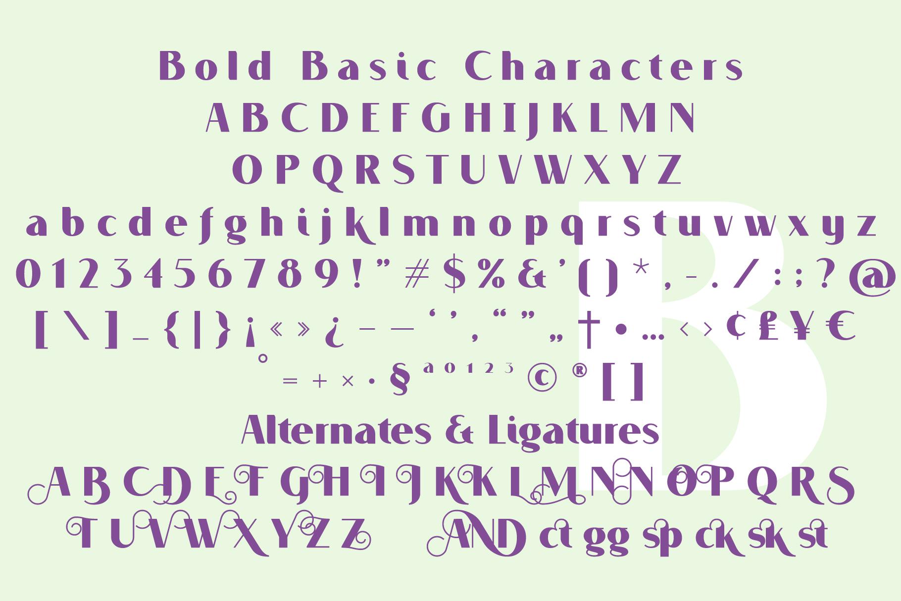 VOGUER Sans example image 6