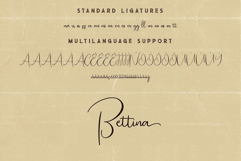 Bettina Script Font example image 7
