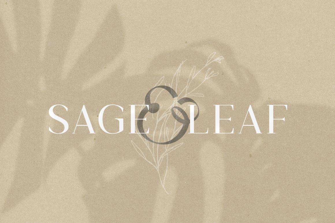 Gorgeous Serif Font example image 2