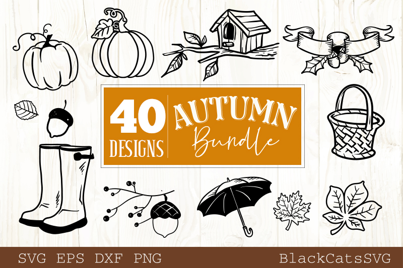 Autumn SVG bundle 40 designs Fall and pumpkins SVG bundle example image 5