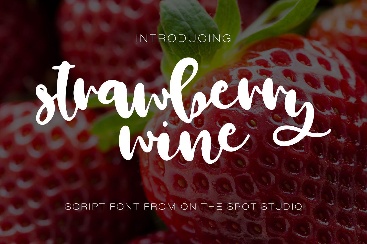 The Remarkable Font Bundle example image 11