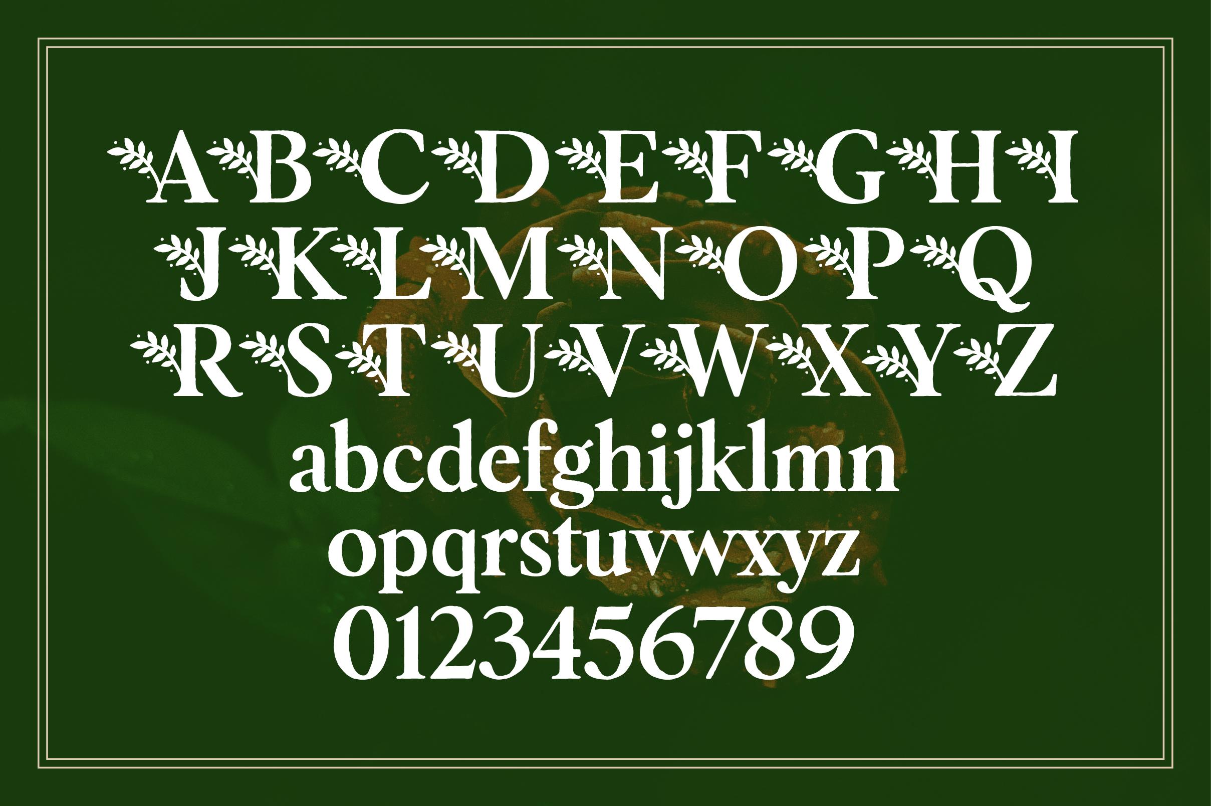Botany Font Family example image 11