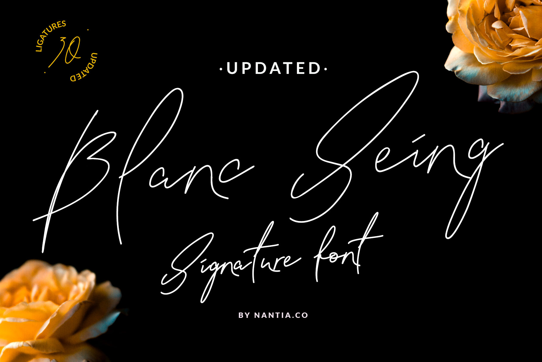 Signature Font Blanc Seing example image 1