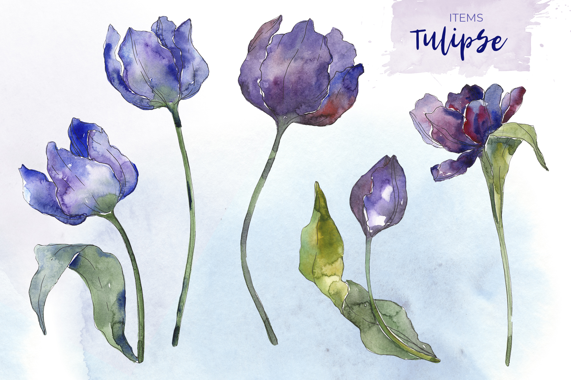 Bouquet of flowers tulips blue penny lane watercolor png example image 2