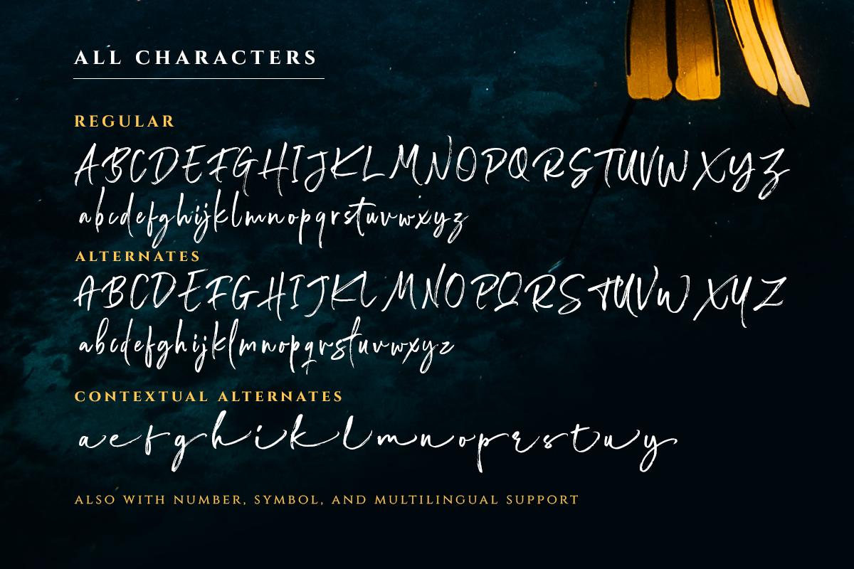 Wonderstory - Brush Script example image 9