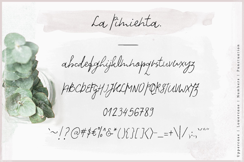 La Pimienta. example image 5