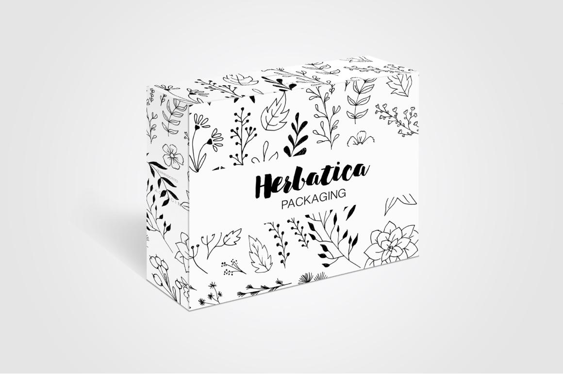 Herbatika Vector Sketched Set example image 4