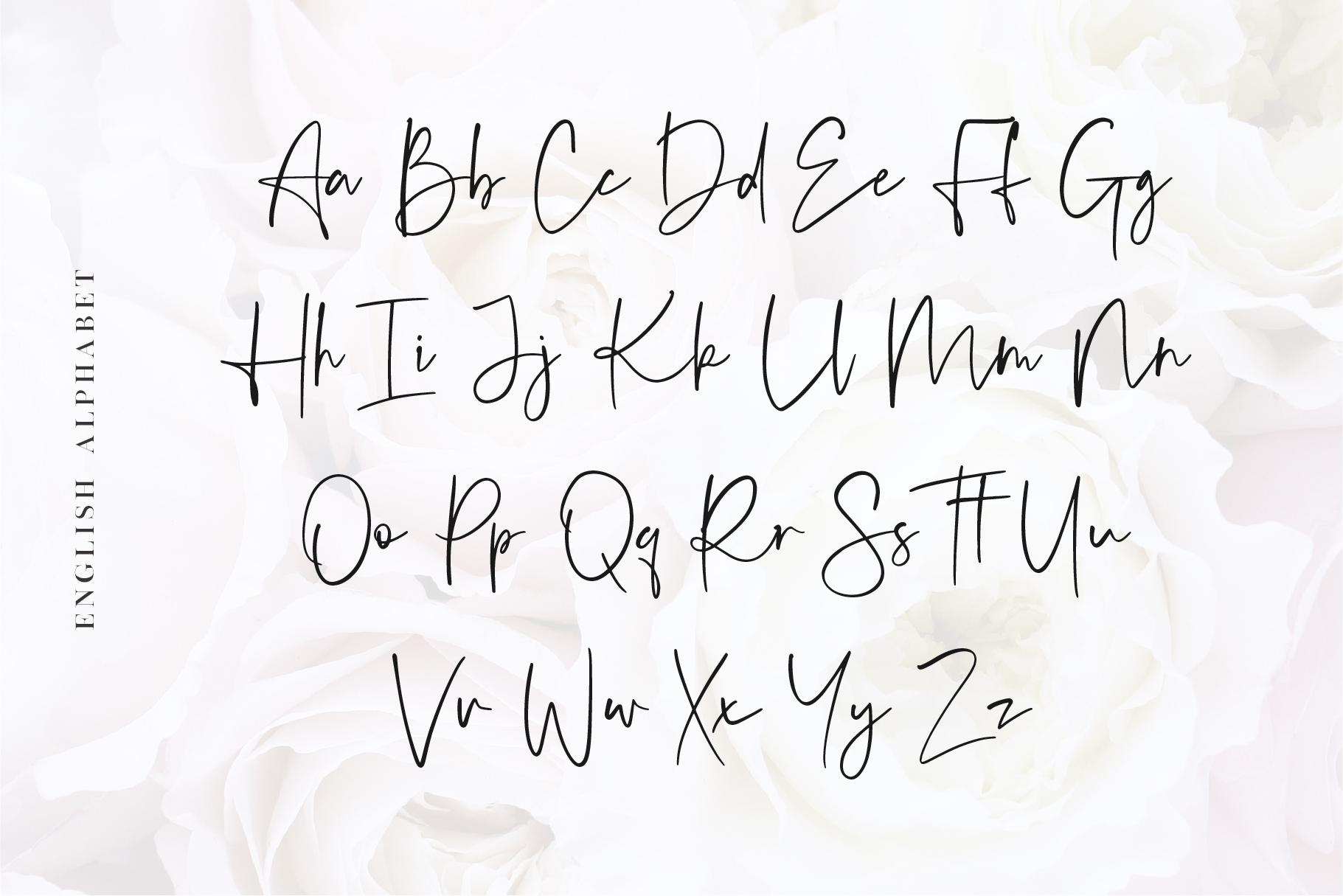 Audrey - A Script Font example image 7