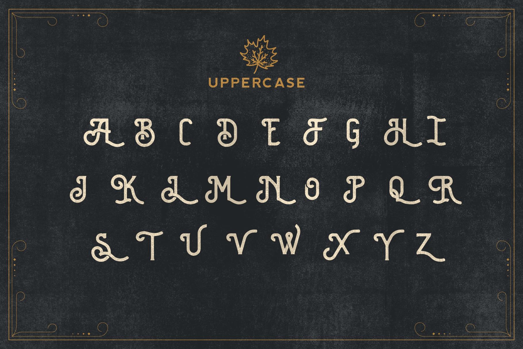 Brewski - Brewery Typeface example image 7