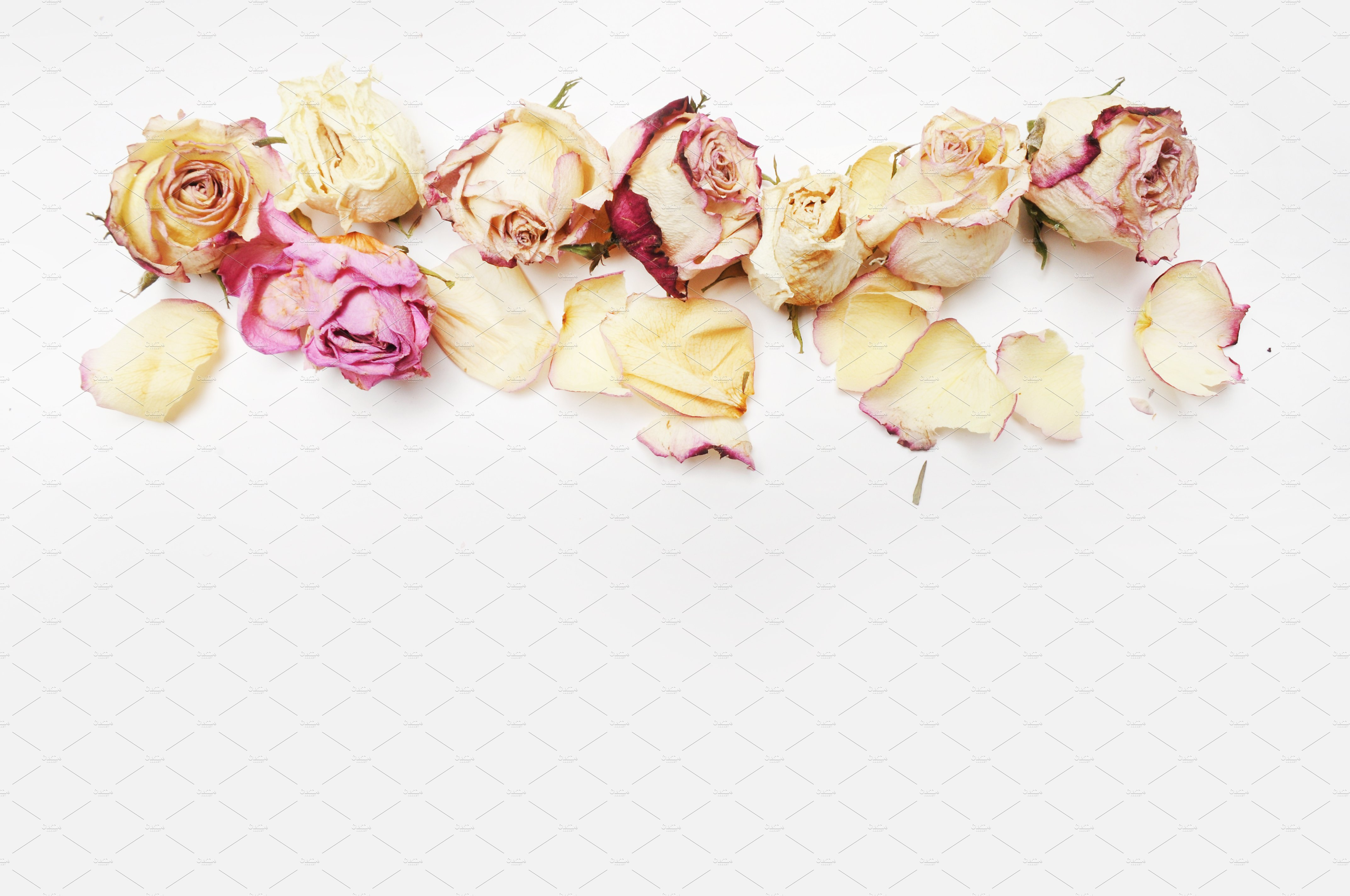 Floral Mockup Pack example image 8
