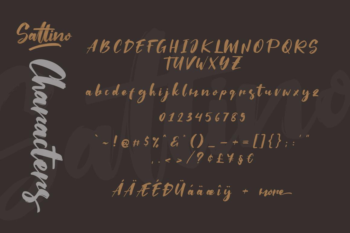 Saltino Script example image 7