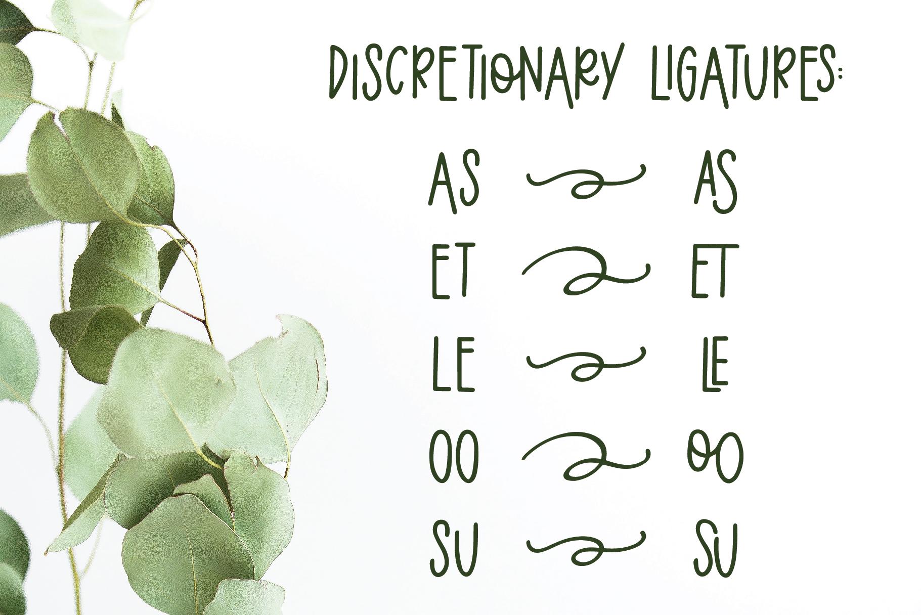 Eucalyptus Spearmint, A Smooth Monoline Font Duo example image 9
