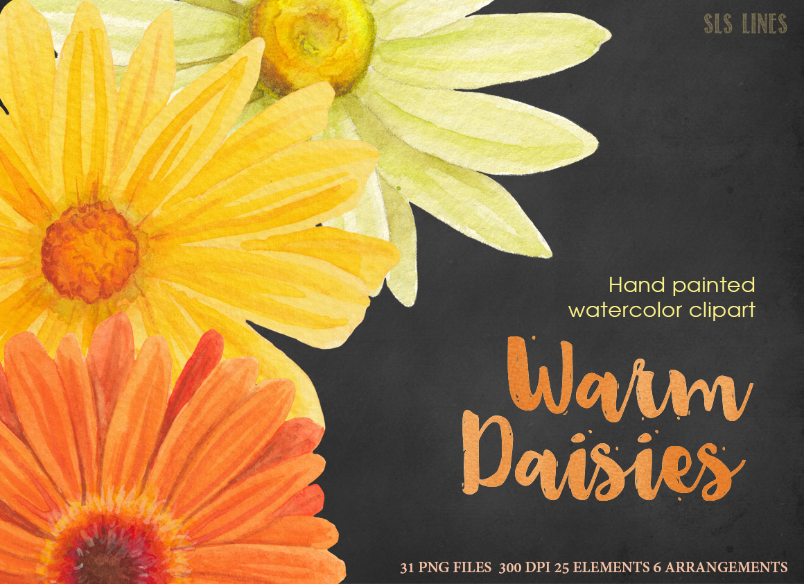 Warm Yellow & Orange Daisies, Watercolor PNG example image 6