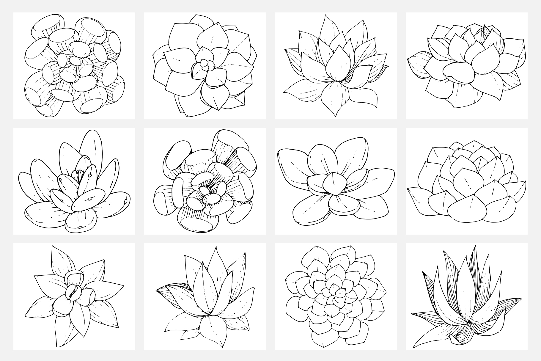 Vector illustration of Freesia flower watercolor png example image 2
