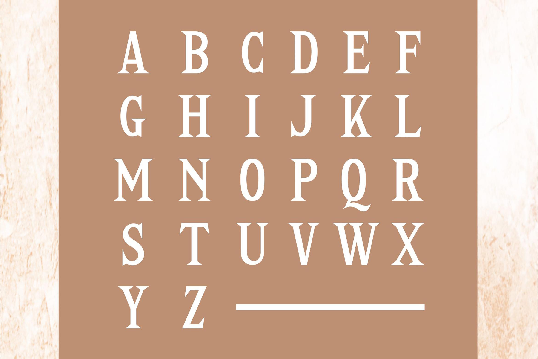 Delia - Regular & Bold Serif example image 3