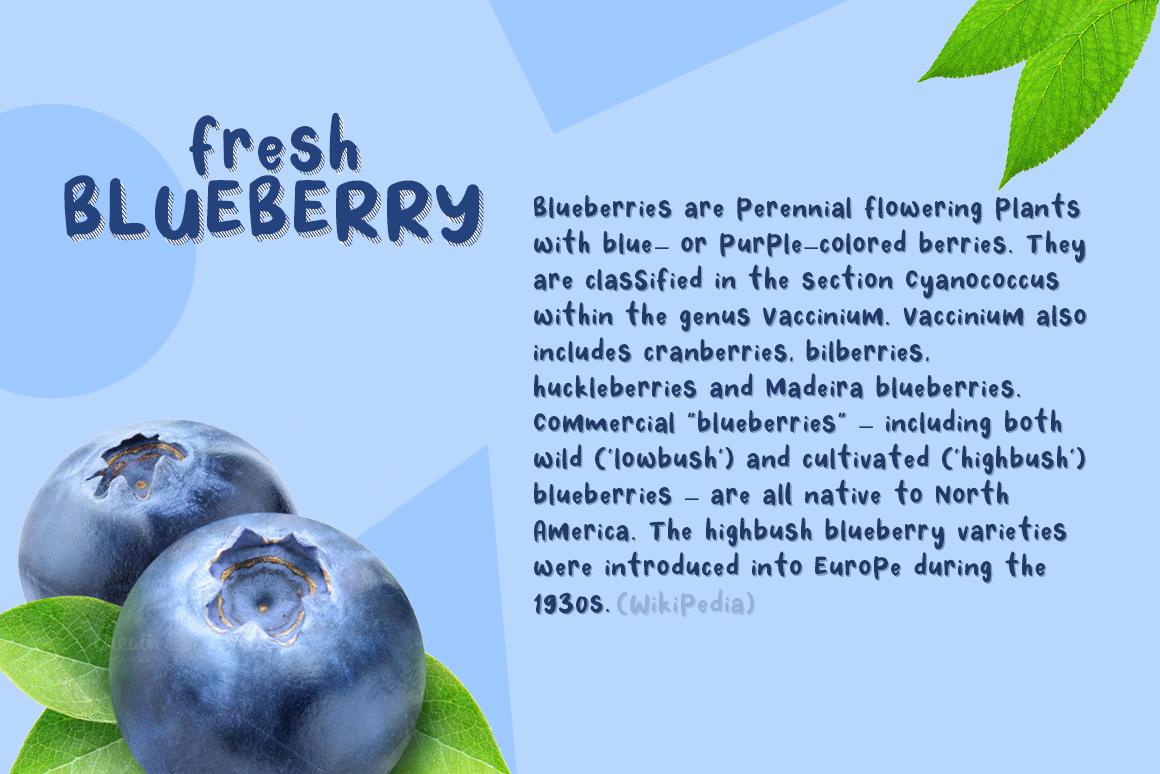 Fresh Blueberry example image 2