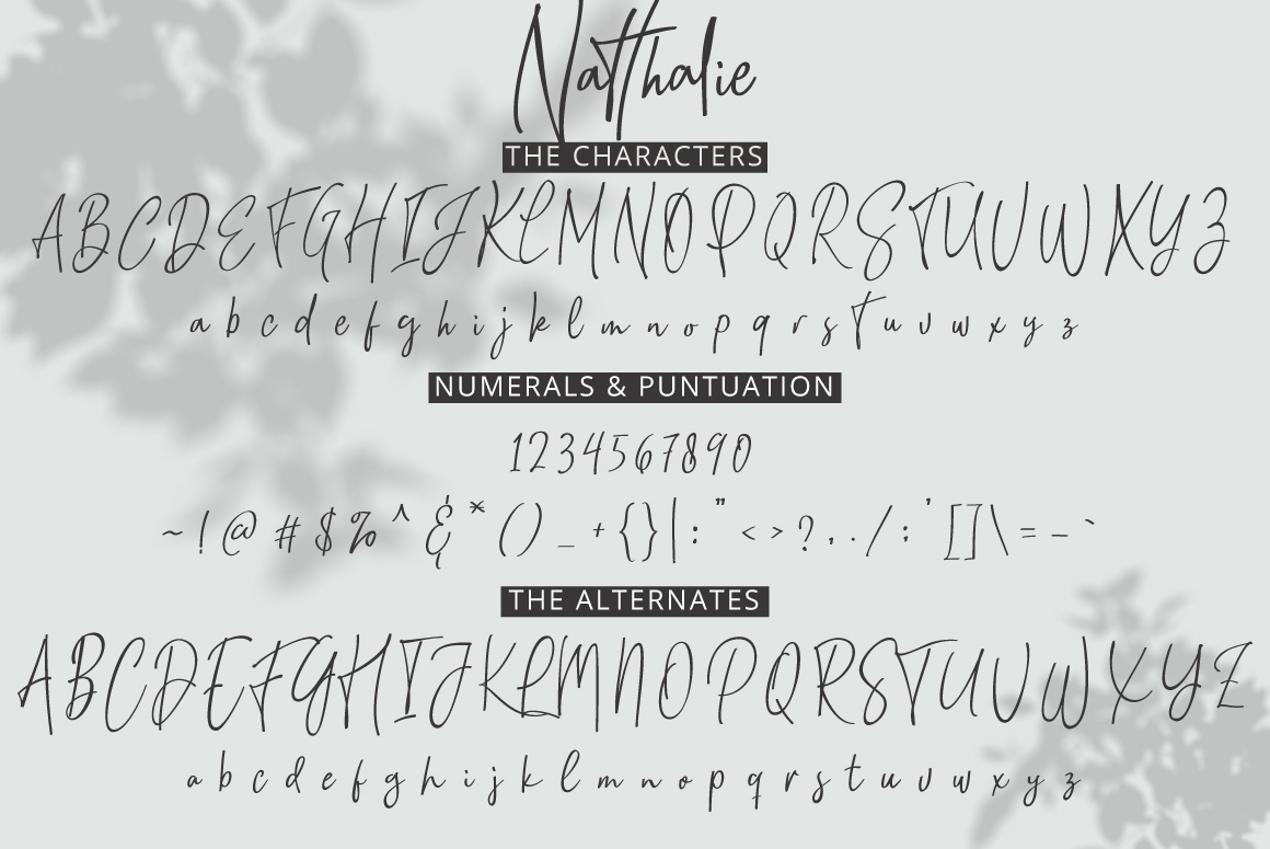 Natthalie Signature example image 8