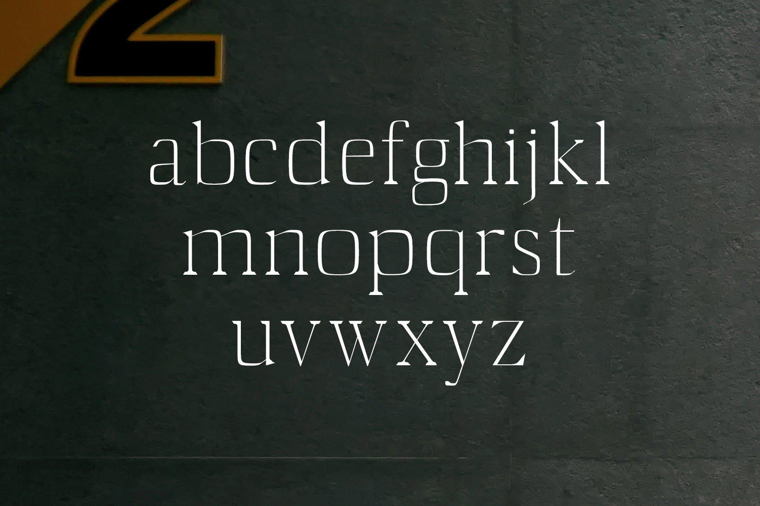 Starlyn Serif Font Family example image 6