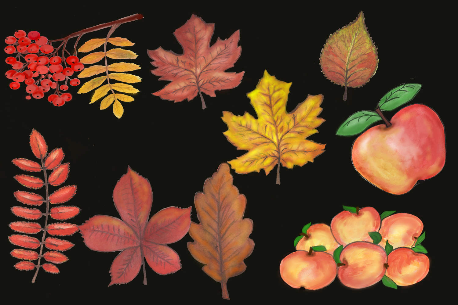 Fall leave Autumn clipart,watercolor fall clipart example image 2