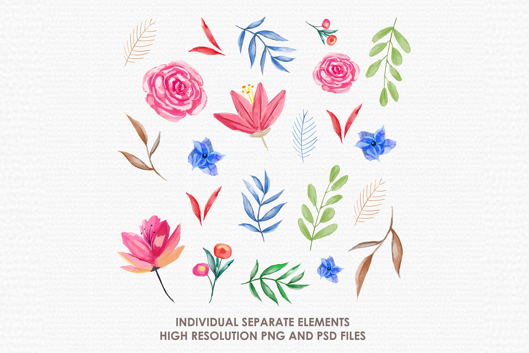 Blue Aster - Digital Watercolor Floral Flower Style Clipart example image 2
