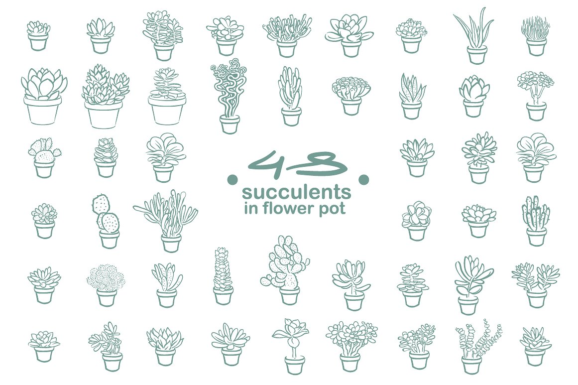 63 Succulents illustration set example image 4