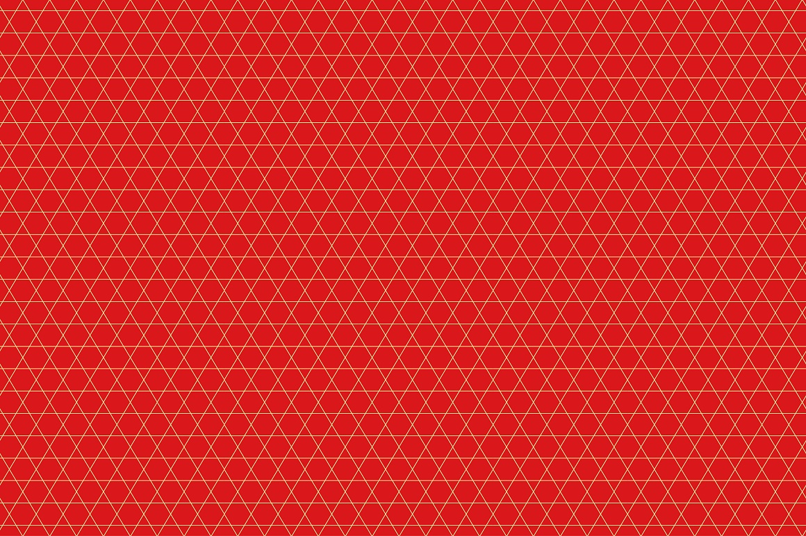 Rich Ornamental Patterns. Seamless. example image 7