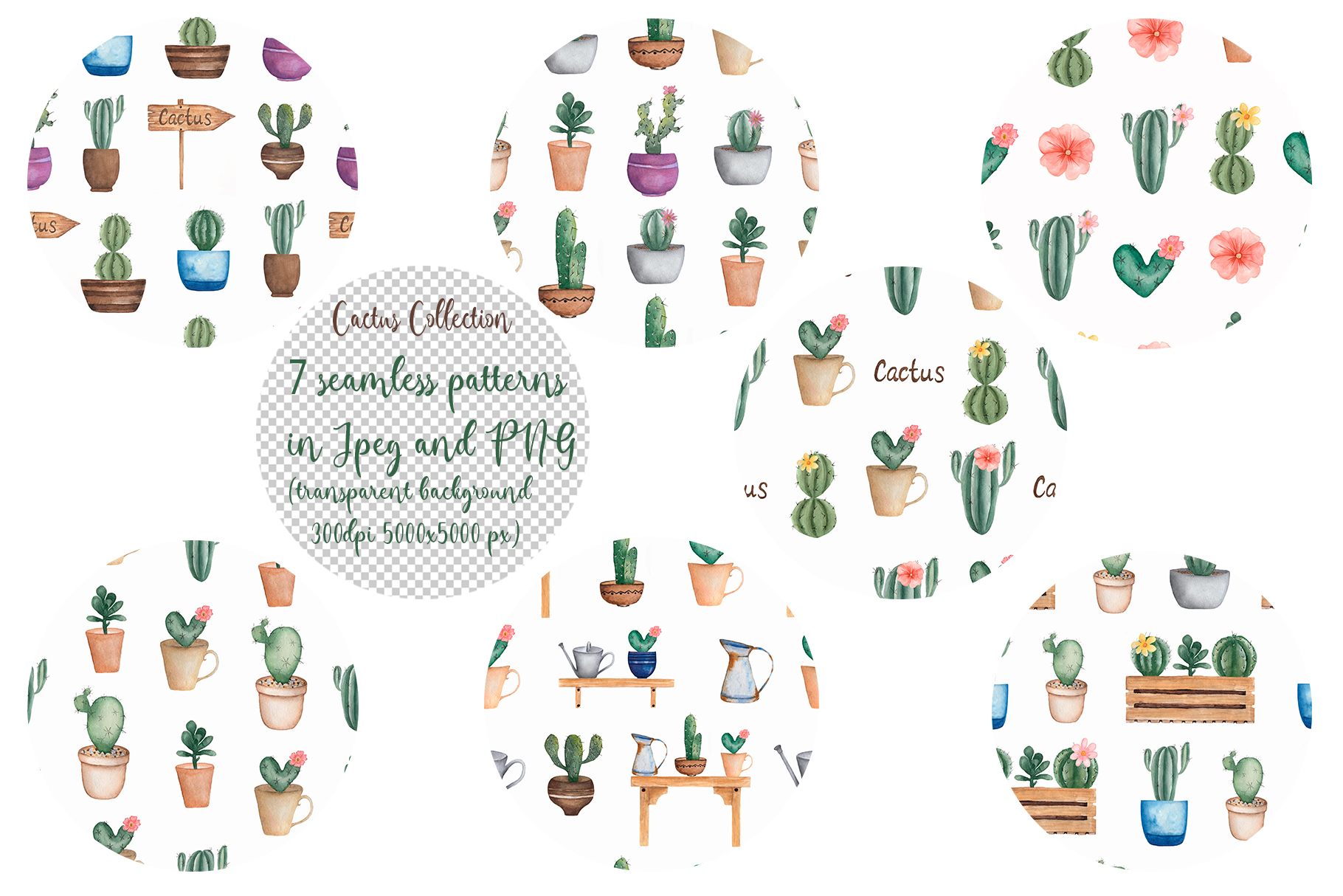 Watercolor Cactus Shop example image 4