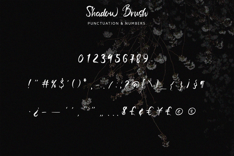 Shadow Brush example image 11