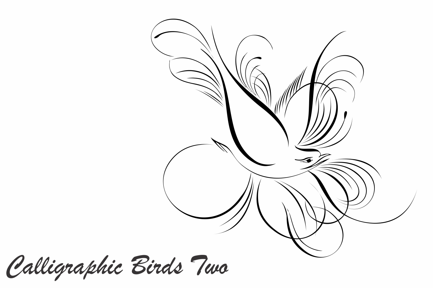 Calligraphic Birds Two example image 1